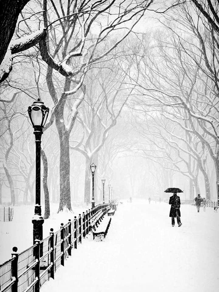 Winter in Romania Snow