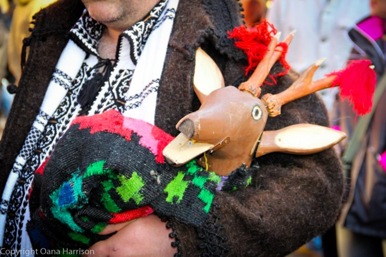 Romanian Traditions Christmas Maramures Capra The Goat