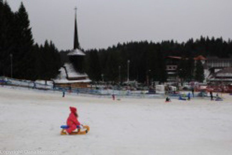 Poiana Brasov Romania Winter Sled