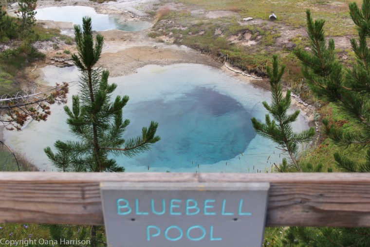 Bluebell-pool-geyser-Yellowstone