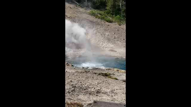 Beryl-Spring-Yellowstone