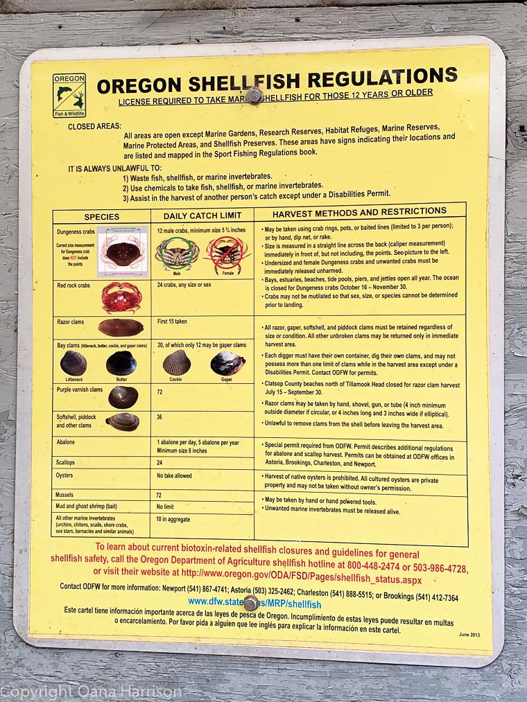 Netarts-Bay-OR-Crabbing-2-shellfish-regulations