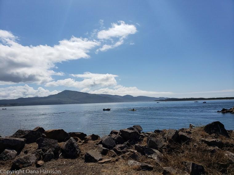 Netarts-Bay-OR-Crabbing-62-boats