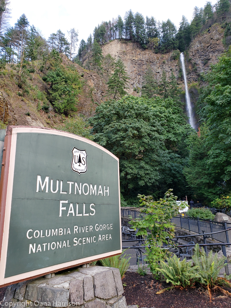 Ainsworth Park Multnomah Falls