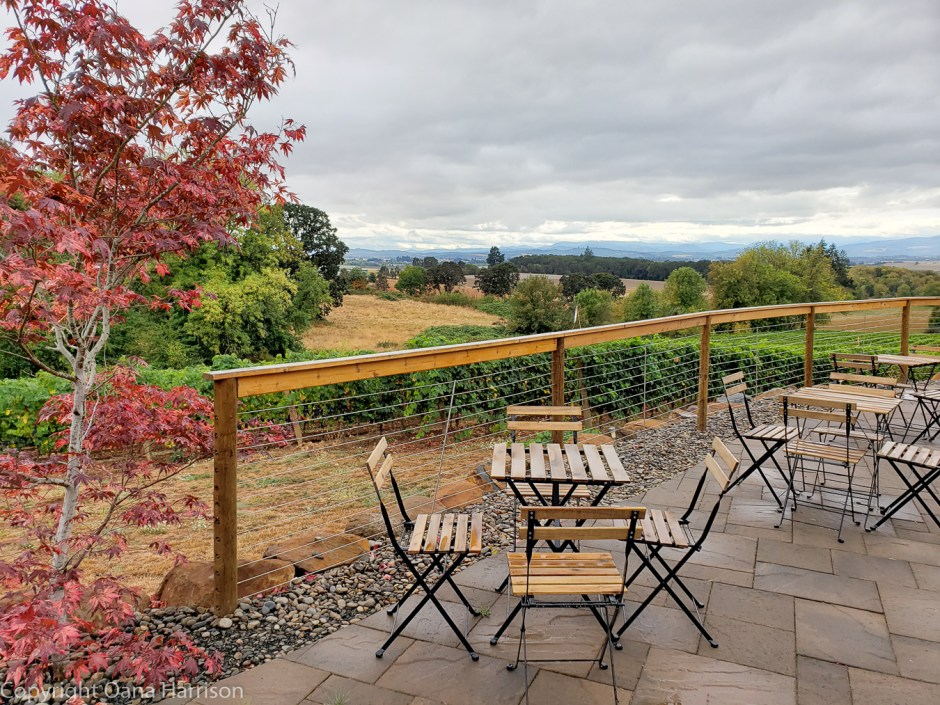 Eola Hills Cellars Salem Oregon terrace after rain