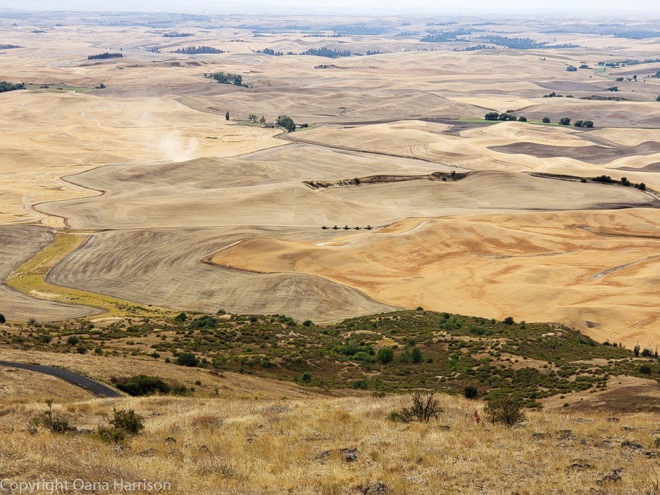 Steptoe-Butte-The-Palouse-Washington