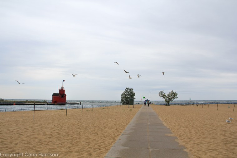 Holland-State-Park-Michigan-seagulls-Big-Red-Lighthouse