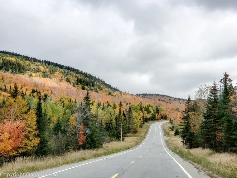 Old Canada Road fall colors