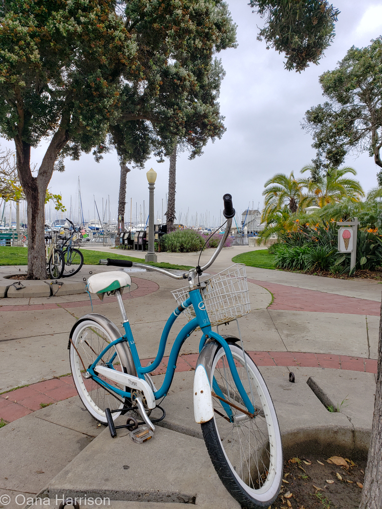 Santa Barbara, California, blue bicycle