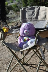 Care Bears like camping, too!