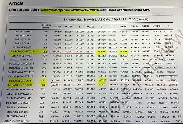 The yellow highlight shows that the overall homology between the new horseshoe bat virus and Wuhan virus has reached 96.2%, and the E protein has reached 100% consistency.
