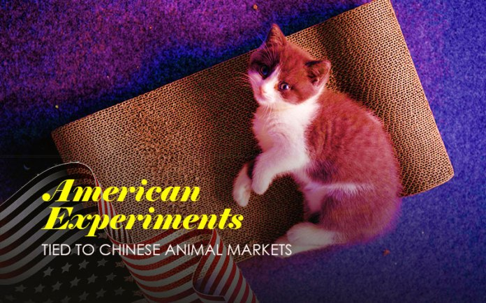 Secret American Experiments Tied To Chinese Animal Markets
