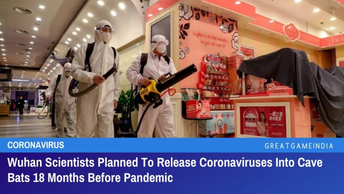 Wuhan Scientists Planned To ReleaseCoronaviruses Into Cave Bats 18 Months Before Pandemic