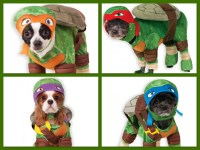 Teenage Mutant Ninja Turtles Dog Costumes Sizes SM