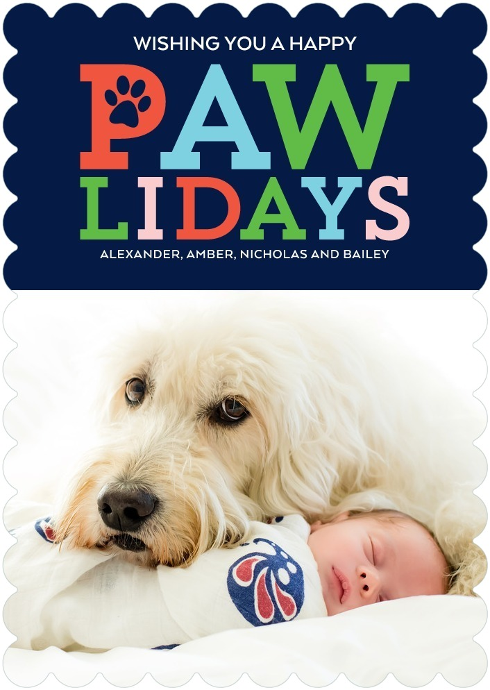 Best Pet Holiday Cards Dog Lover Christmas Photo Cards