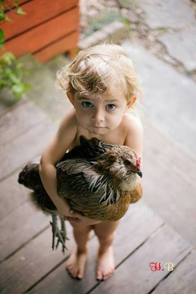 Cute Boy Wallpapers Love Relationship Between Cute Baby And Pet Great Inspire