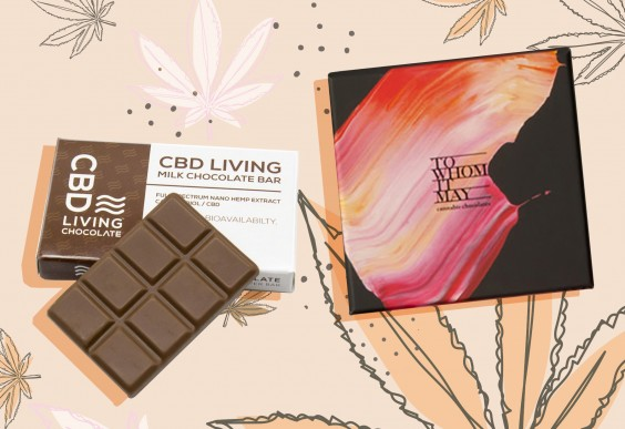 Our Super-Honest Review of the Best and Worst CBD Edibles