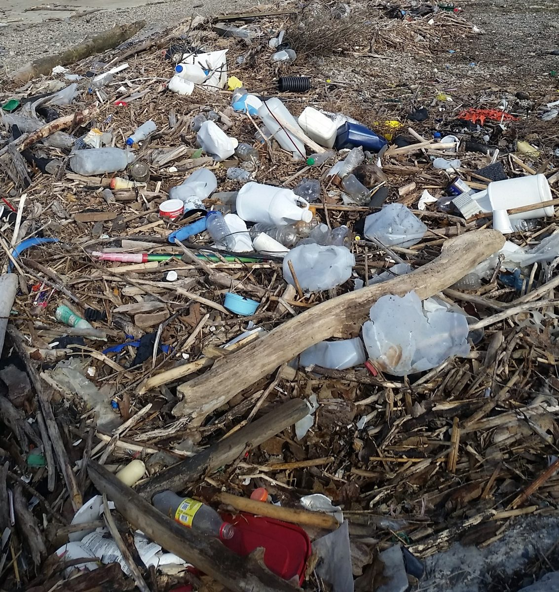 5 Ways Plastic Pollution Is Different In The Great Lakes