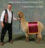 LondonDairy Alpacas, LLC