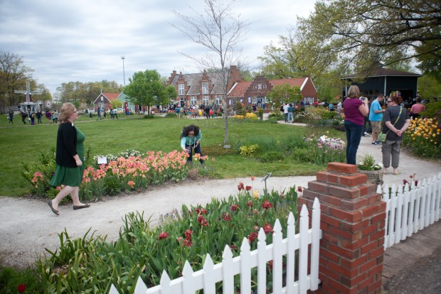 2017 Tulip Time Festival - Holland, MI