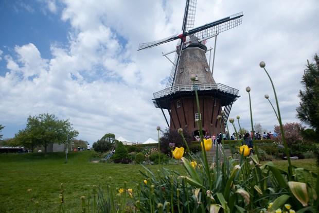 2017 Tulip Time Festival - Holland, MI