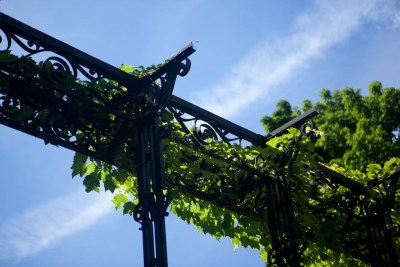 Sonnenberg Gardens & Mansion