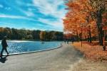 Montreal Beaver Lake