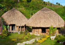 honai, papua traditional house