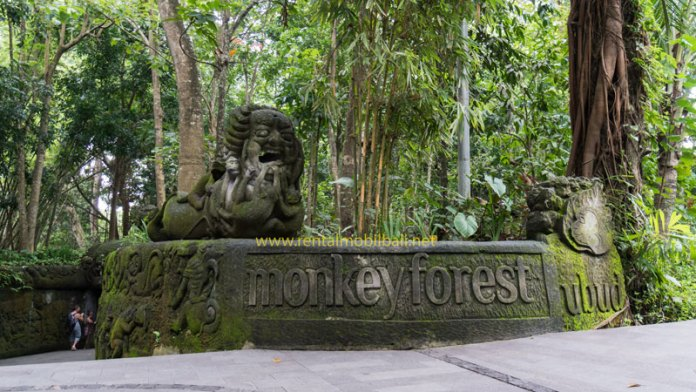 monkey forest - tempat wisata murah bali