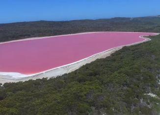 lacurile roz