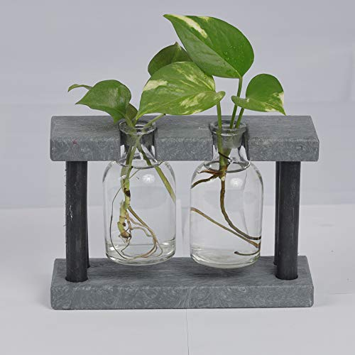 Econiture Round Pillar Planter Recycled Plastic Stand Indoor Tabletop Glass Terrarium for Propagating Hydroponics Plants (2 Bottles, Grey) Furniture