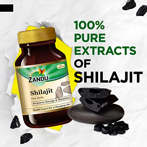 Zandu Shilajit Capsules, Infused with Goodness of Natural Shilajit Extracts, Helps Boost Immunity & Energy, Supports Metabolism – 60 Vegetarian Capsules Health Care