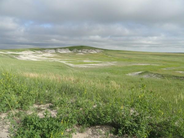 Grasslands American Landscape Great Plains Trail