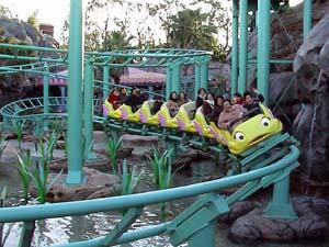 flounder_coaster1.jpg