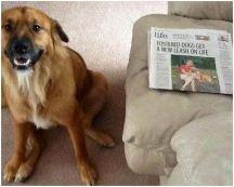 Rocky Times Union story
