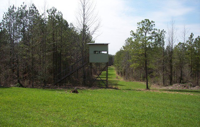 Buying Hunting Land 101 – A Guide For The First Time Buyer
