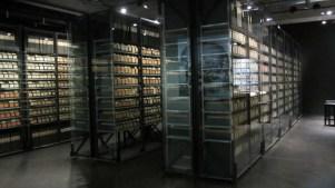 Index cards document 2.5 million WW1 POWs