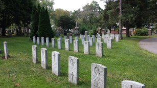 Row upon row of graves