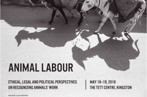 Animal Labour: Ethical, Legal and Political Perspectives on Recognizing Animals' Work @ The TETT CENTRE, Kingston, ON