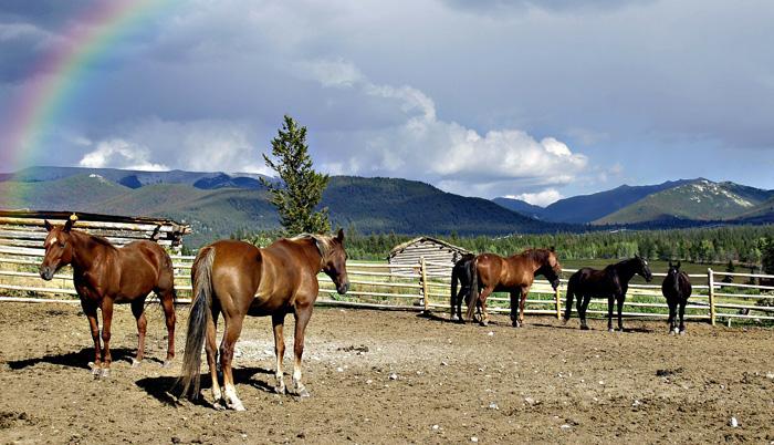 Horseback Riding at Keystone