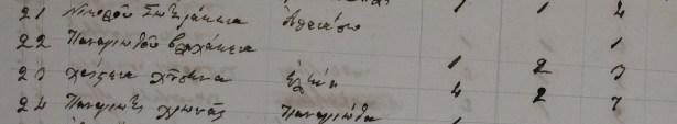 Families of Kastoreio (Kastania), Mystras, Parori, Socha & Vassaras