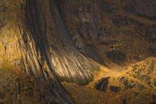 Tapestry-of-life-©-Dorin-Bofan-Wildlife-Photographer-of-the-Year-800x534