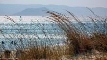 Grass and sand in Plaka Beach