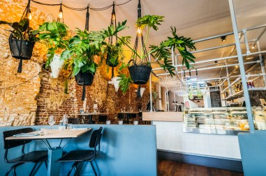 Green Amsterdam - Vegan Spots Spingaren Interior Plants