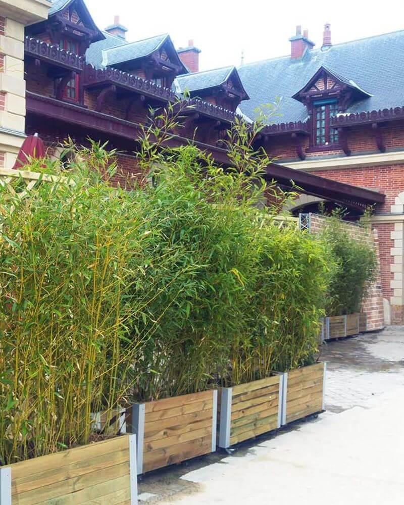 Abris Terrasse Bambou En Ville Comment Avoir Un Balcon Ou