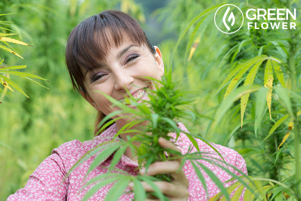 Why You Ought To Start Cigarette Smoking Marijuana Right!