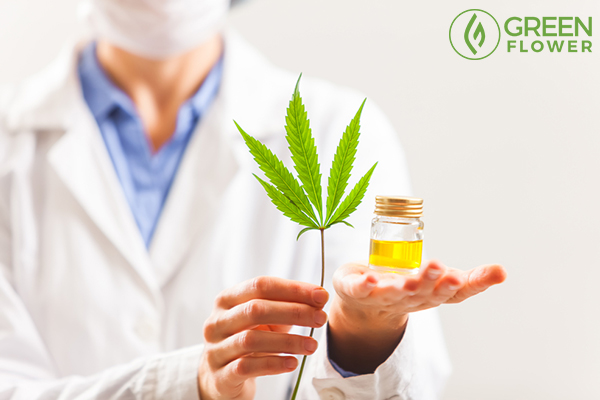 doctor with cannabis leaf and oil