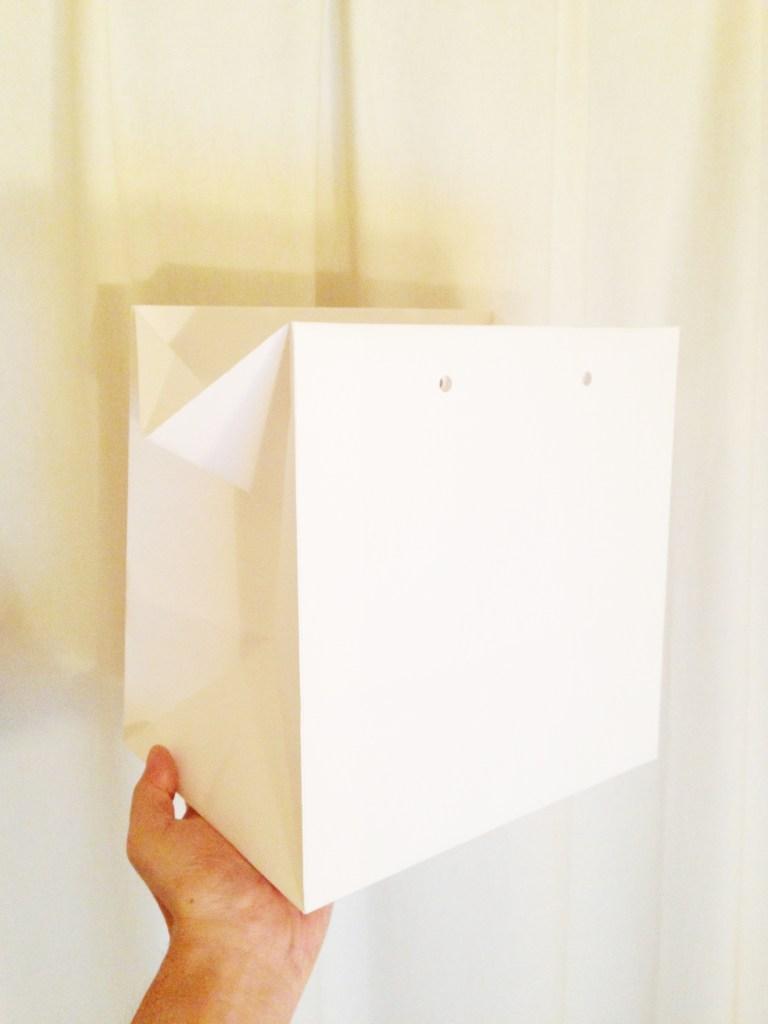 制作中紙袋サンプル2