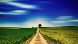 sky, panorama, field
