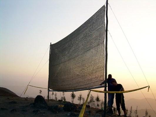 design-tut-gut-peruvian-fog-catcher